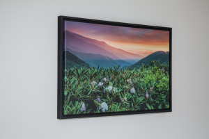 Float Frame installed on a gallery wrapped canvas