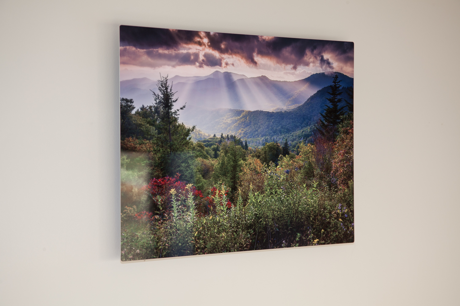 print info new products rob travis photography