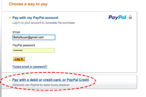 Screen Shot PayPal Option AM
