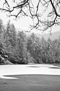 Far Side in Winter 4
