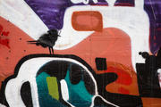 Graffiti in the River Arts District