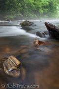 Stony bottom on Davidson River