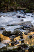 Gold in the Water - Jones Gap State Park