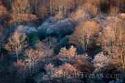 Nature's Palette, Graveyard fields on the BR Parkway