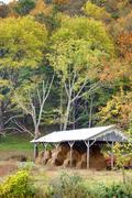 Hay Barn, Shoal Falls Farm