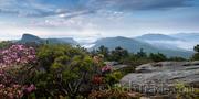 Hawksbill Panorama