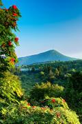 Mountain Ashe and Mount Pisgah