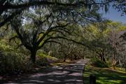 2018 Charleston - Charles Town