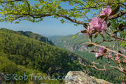 Linville Gorge - Chimney View