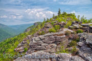 Linville Gorge Layers
