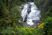High Falls w/ Goldenrod, DuPont State Forest
