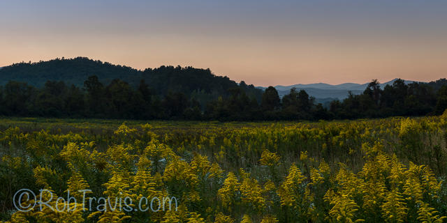Alpenglow and a Field of Beauties...Pano