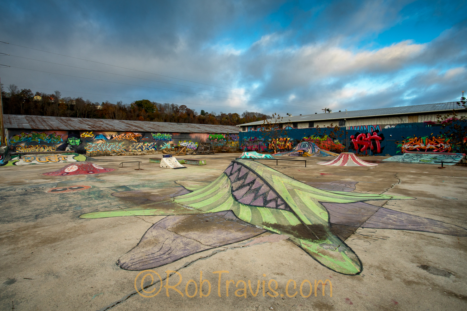 River Arts District in Asheville - Skatepark l
