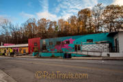 River Arts District in Asheville - Pink Dog