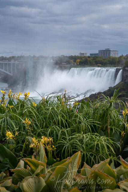 American Falls with foliage _DSC0162