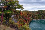 Niagara Falls Scenic - Whirlpool fall foliage _DSC0231