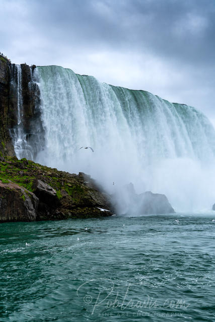 Horseshoe Falls - Boatride _DSC0311