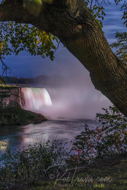Horseshoe Falls, Twilight View through Trees _DSC0572