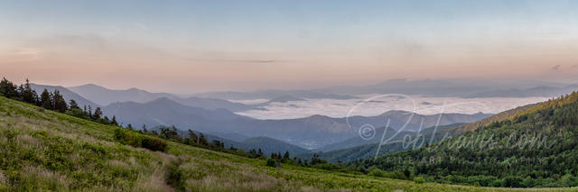 Roan Mountain Foggy Valley