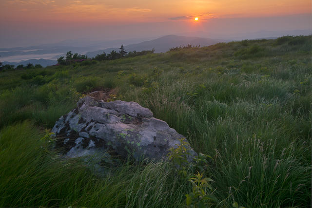 Roan Mountain Morning