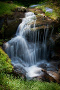 Simple Falls with Bluets