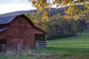 Autumn Barn near Mills River
