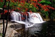 Hooker Falls in Autumn l,