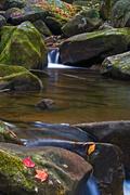 Autumn Cascade at Jones Gap