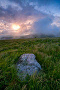 Sunrise on a stormy morning on Roan Mountain