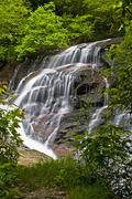 Batson Creek Falls by Forest Path