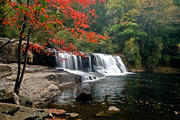 Hooker Falls in Autumn ll