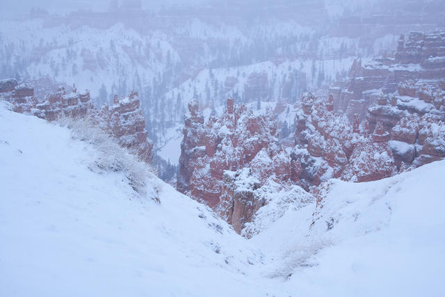 Snowy Bryce Canyon