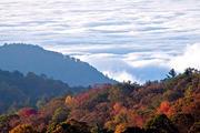 Cloudscape Near Blowing Rock, NC