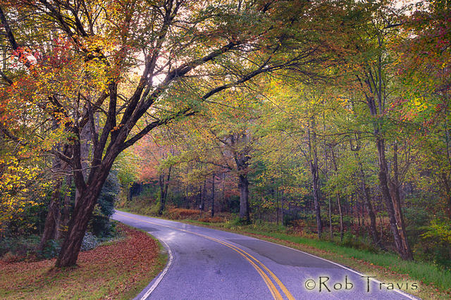 Down my Road in Autumn - Cedar Mountain, NC