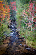 Little River in Autumn, DuPont State Forest