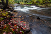 Autumn Cascade at Little River