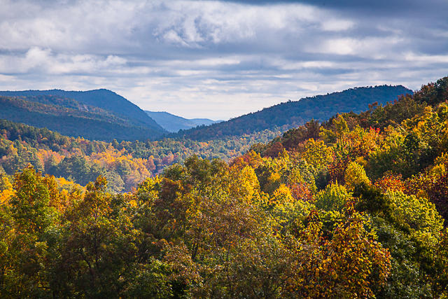 Autumn View, Cedar Mountain, NC