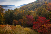 Autumn View From The Glass Feather Studio, Cedar Mountain, NC