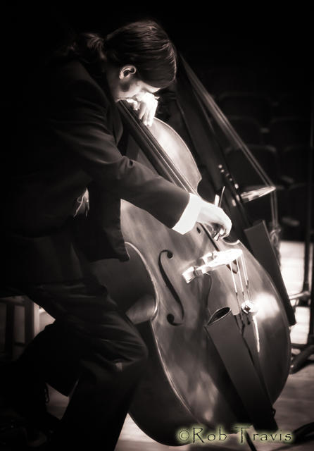 Double Bass Expression