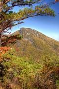 Hawks BIll Mountain