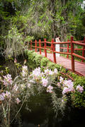 Bridge at Magnolia Gardens ll