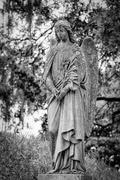 Magnolia Cemetery. Standing guard