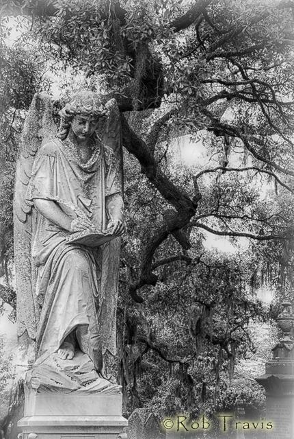Magnolia Cemetery. Record Keeper l