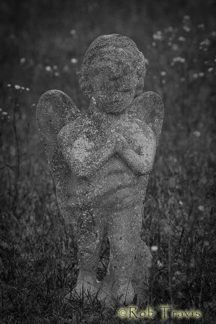 Magnolia Cemetery. Cherub.