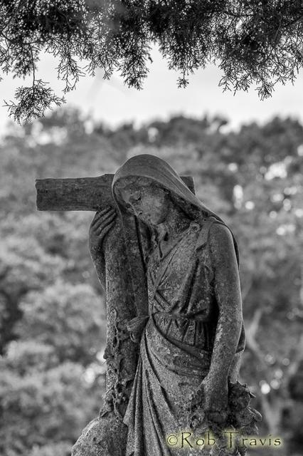 Magnolia Cemetery. Framed.