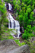 White Water Falls in May
